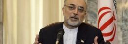 صالحی: ایران ۹۵۰ تن کیک زرد و الیاف کربن میخرد