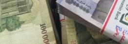 اعلام اسامی دانه درشت ها در پرونده بدهکاران بانک سرمایه