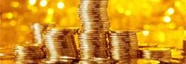 آغاز تحویل سکههای پیشفروش سه ماهه در شعب بانک ملی ایران