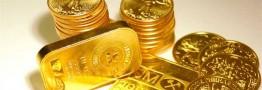 فهرست ۵۰ نفر اول خریدار سکه به سازمان مالیاتی تحویل شد