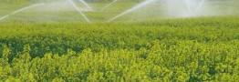 تجهیز سالانه حدود 300 هزار هکتار زمین به آبیاری نوین