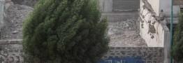 باد و بارش پراکنده در شهرهای مرزی ایران و عراق