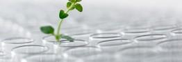 شرکت Dupont از ادغام دو واحد تولید پلاستیک خود خبر داد