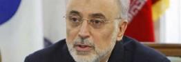 صالحی: ورود به فاز جدید با اجرای برجام/ایران روی سکوی پرتاب قرار گرفته است