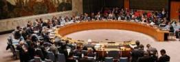 رئیس شورای امنیت درمورد دخالت های ترکیه در سوریه هشدار داد