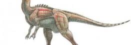 کشف بقایای دایناسور 2 پا در ارتفاعات البرز ایران