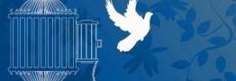 113 هزار زندانی جرائم غیرعمد در کشور آزاد شدند