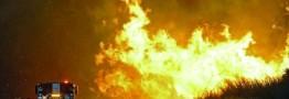 تلفات آتش سوزی کالیفرنیا به 44 کشته رسید